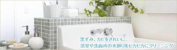 黒ずみ、カビをきれいに 浴室や洗面所の水廻りをピカピカにクリーニング